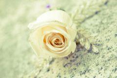 Korčula-Wedding-Planner-Organizer-Croatia-I-015-W2